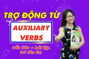 Trợ động từ trong tiếng anh (auxiliary verbs) – những điều cần biết