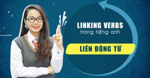 Lingking Verbs (Động Từ Nối) Trong Tiếng Anh