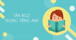 Tân ngữ là gì? Cách sử dụng tân ngữ trong tiếng anh