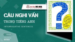 Câu nghi Vấn trong tiếng Anh (Interrogative sentences)