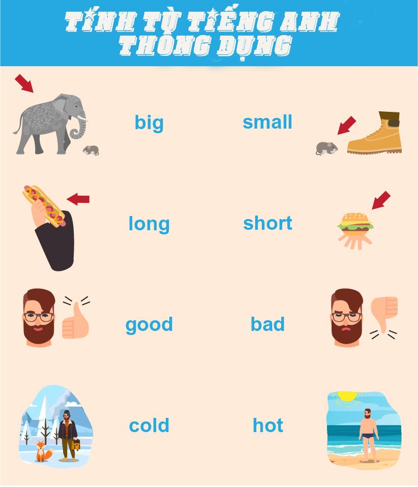 tính từ trong tiếng Anh thông dụng