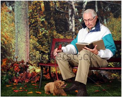 ông già đọc sách